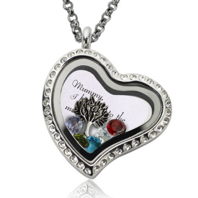 Attractive Stainless Steel Personalized Family Floating Crystal Living Locket