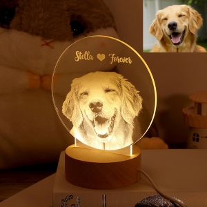 Personalized 3D Photo Night Light Gift for Love